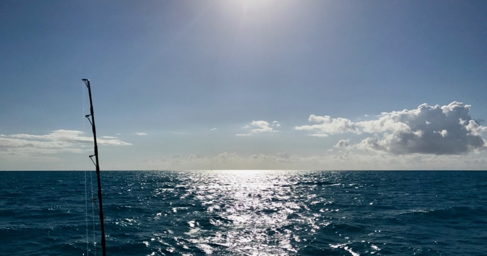 Fishing Charter in Key West